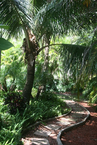The Questions You Must Ask Your Fort Myers Landscaper